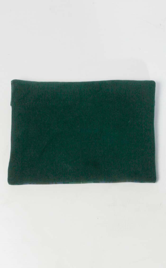 scotweb-ipad-mini-cover-isle_of_skye_modern-rear