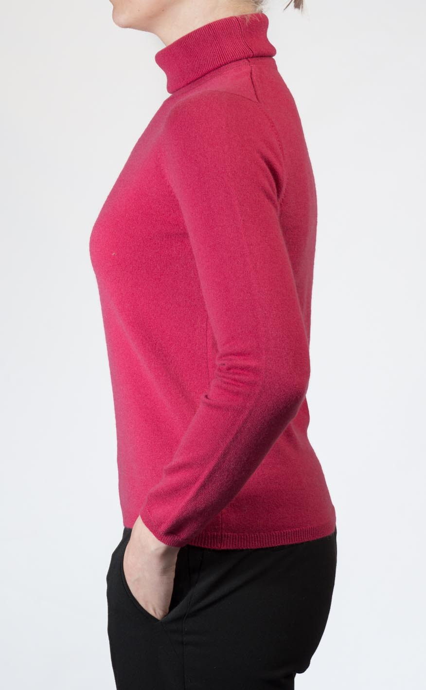 Colour: Protea