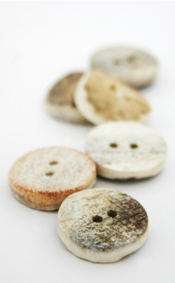 Stag Antler Buttons (6) Medium